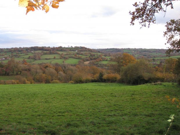 Ridgewood from Combe Hill in the Autumn