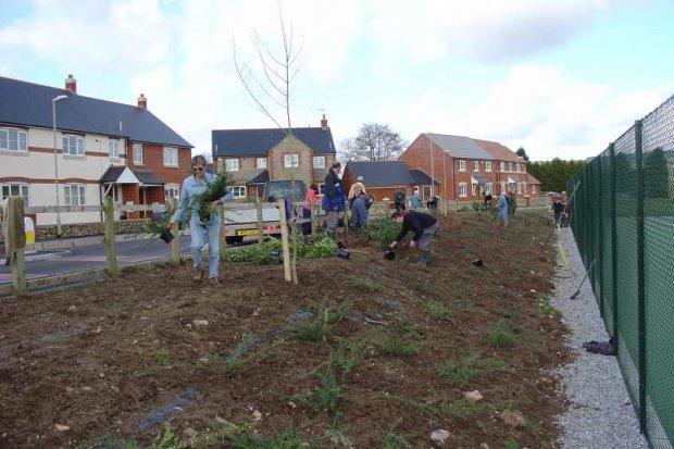 Volunteers planting shrubs - April 06