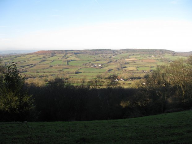 Culm Davy from above Owleycombe Common