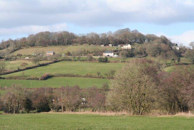 Combe Hill from near Culm Bridge