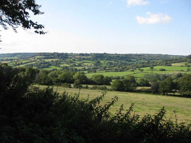 Combe Hill from the Ridgewood road