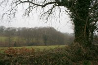 Woodland and farmland. Looking north west.  Image © Martin Bodman