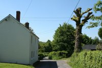 Looking north west. Note the TV aerial positioned in the tree across the road for better reception.  Image © Martin Bodman