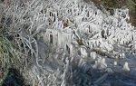 A bit more ice sculpture